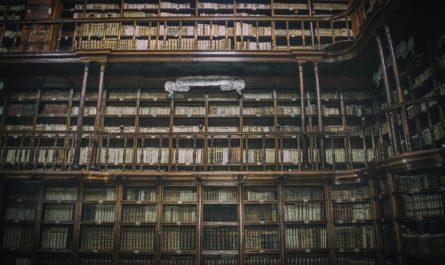 Полки с книгами в библиотеке
