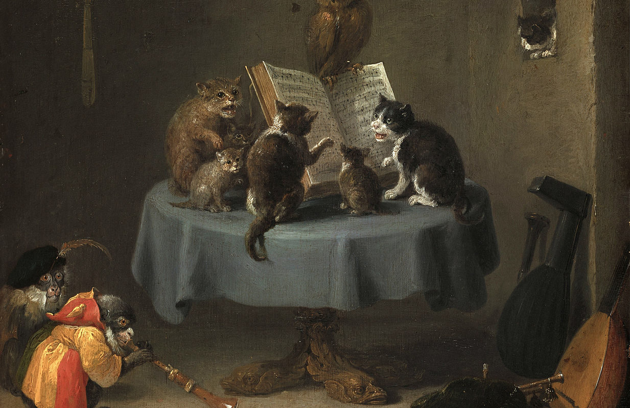 Кошки читают книгу